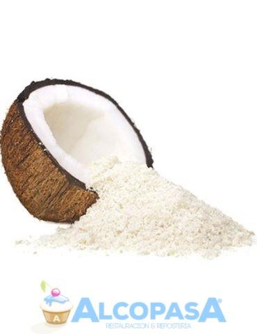 coco-rallado-bolsa-1kg